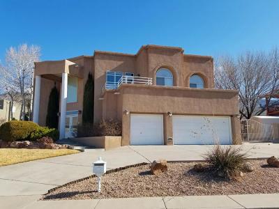 Albuquerque Single Family Home For Sale: 1604 Wells Drive NE