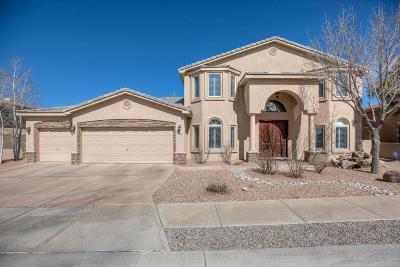 Albuquerque Single Family Home For Sale: 8205 Via Alegre NE