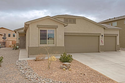 Rio Rancho Single Family Home For Sale: 2830 Bayas Road SE