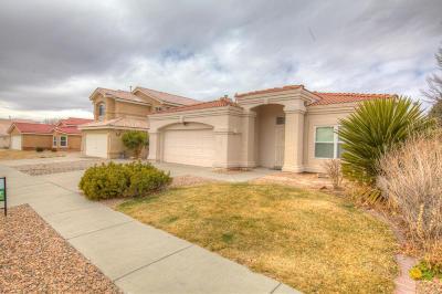 Albuquerque Single Family Home For Sale: 1005 Tony Sanchez SE