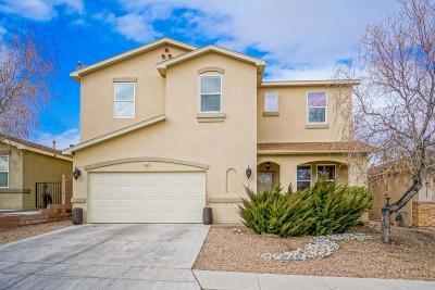 Albuquerque Single Family Home For Sale: 9301 Daisy Summer Avenue SW