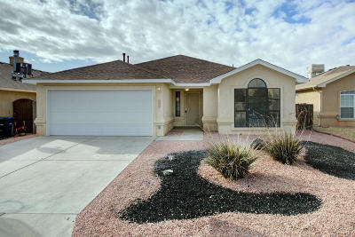 Albuquerque Single Family Home For Sale: 6404 Summerwood NW