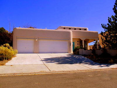 Albuquerque Single Family Home For Sale: 1510 Wells Drive NE