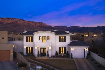 Albuquerque NM Single Family Home For Sale: $850,000