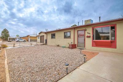 Albuquerque Single Family Home For Sale: 1725 Shirley Street NE