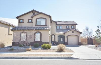 Albuquerque Single Family Home For Sale: 8520 Hawk Eye Road NW