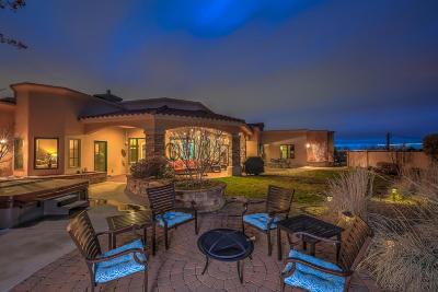 Albuquerque NM Single Family Home For Sale: $775,000