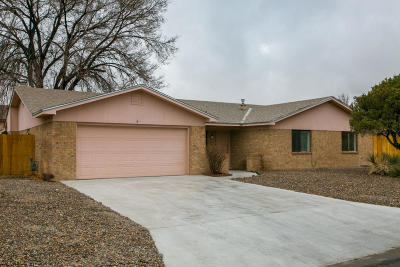 Albuquerque Single Family Home For Sale: 5208 Timan Avenue NW