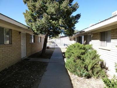 Albuquerque NM Multi Family Home For Sale: $205,000