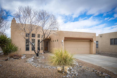 Albuquerque Single Family Home For Sale: 12709 Carmel Court NE