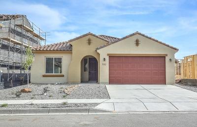 Albuquerque, Rio Rancho Single Family Home For Sale: 7102 Overview Road NE