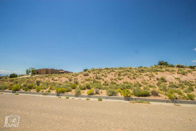 Rio Rancho Residential Lots & Land For Sale: 2413 Desert Marigold Road NE