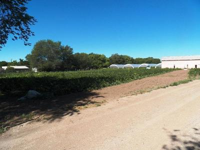 Albuquerque Farm & Ranch For Sale: 7525 Ray Court SW