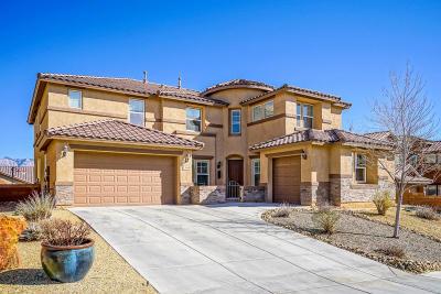 Rio Rancho Single Family Home For Sale: 36 Los Balcones Place NE