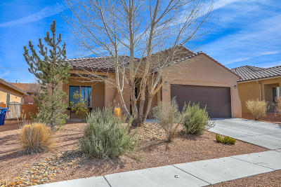 Single Family Home For Sale: 2036 Salvator Drive SE