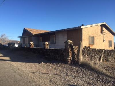Single Family Home For Sale: 301 Vernon