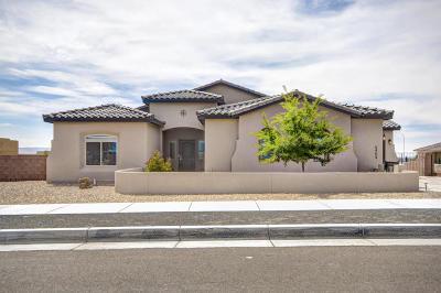 Albuquerque NM Single Family Home For Sale: $430,000