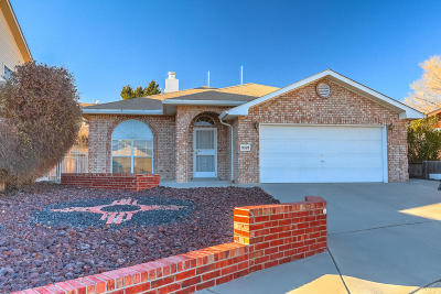 Albuquerque Single Family Home For Sale: 9329 Prickly Pear Street NW
