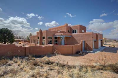 Albuquerque NM Single Family Home For Sale: $669,500