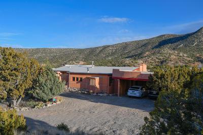 Placitas Single Family Home For Sale: 32 Camino A Las Estrellas
