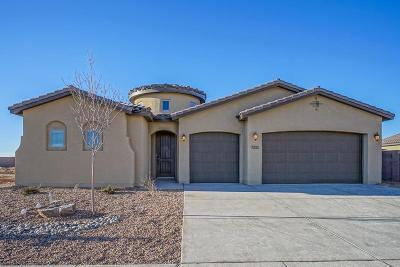 Rio Rancho Single Family Home For Sale: 7213 Aldan Drive NE