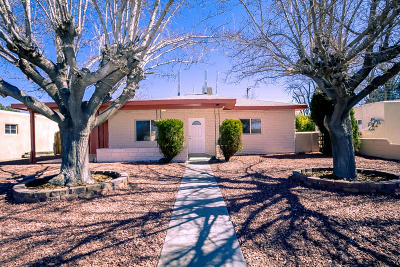 Albuquerque Single Family Home For Sale: 1340 Boatright Drive NE