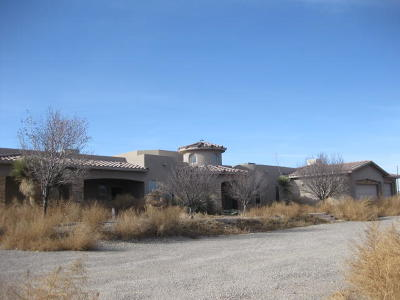Albuquerque Single Family Home For Sale: 6925 Coors Road SW