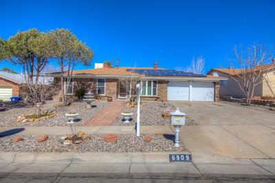 Single Family Home For Sale: 6909 Christy Avenue NE