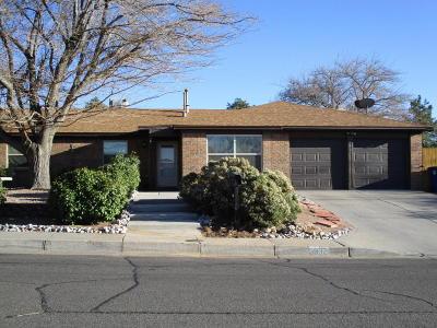 Albuquerque Single Family Home For Sale: 3832 Tracy Street NE