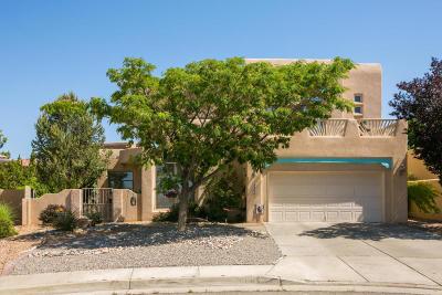Bernalillo County Single Family Home For Sale: 9005 Corona Avenue NE