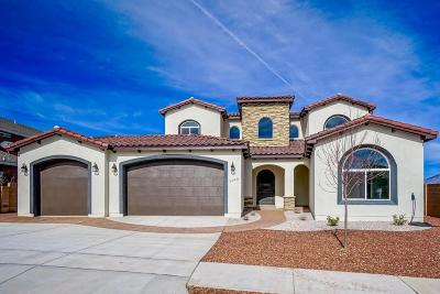 Albuquerque NM Single Family Home For Sale: $485,000