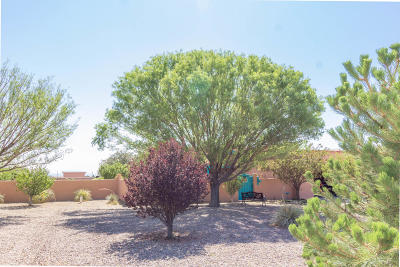 Tijeras, Cedar Crest, Sandia Park, Edgewood, Moriarty, Stanley Single Family Home For Sale: 938 State Highway 344
