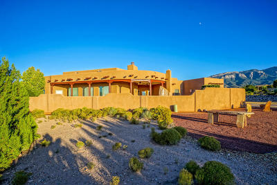 Placitas Single Family Home For Sale: 29 Anasazi Trails Loop