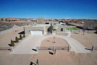 Rio Rancho Single Family Home For Sale: 1722 16th Avenue SE