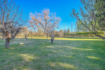 Bernalillo County Residential Lots & Land For Sale: 8633 Rio Grande Boulevard NW
