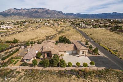 Albuquerque Single Family Home For Sale: 8821 Modesto Avenue NE
