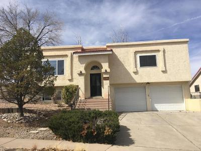 Albuquerque Single Family Home For Sale: 4513 Greene Avenue NW