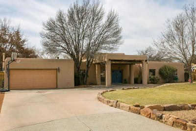 Albuquerque Single Family Home Active Under Contract - Short : 944 Camino Ranchitos NW