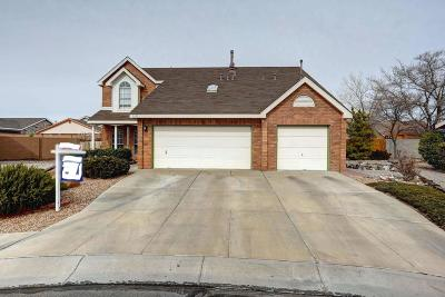 Albuquerque Single Family Home For Sale: 9325 Joe Montoya Place NW