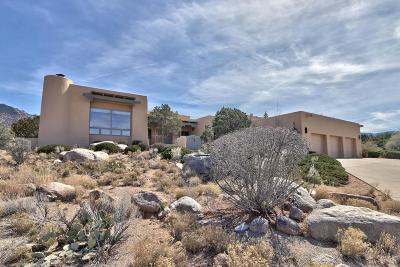 Sandia Heights Single Family Home For Sale: 323 Paint Brush Drive NE