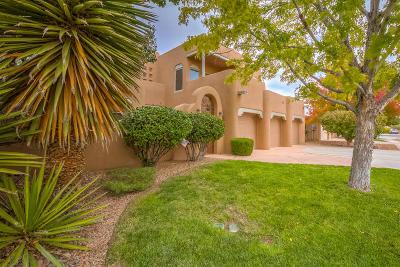 Albuquerque Single Family Home For Sale: 2228 Via Seville Road NW