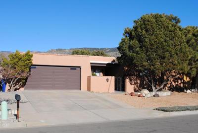 Albuquerque Single Family Home For Sale: 4116 Shiloh Drive NE