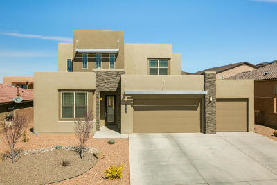 Rio Rancho Single Family Home For Sale: 2817 Arce Lane SE