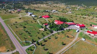 Tijeras, Cedar Crest, Sandia Park, Edgewood, Moriarty, Stanley Single Family Home For Sale: 10 Vallecitos Drive