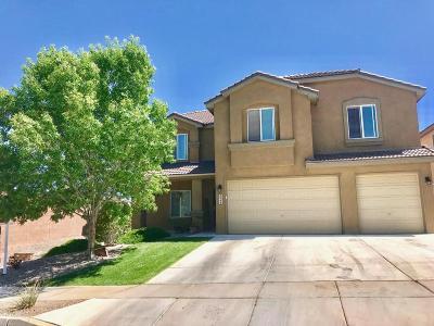Rio Rancho Single Family Home For Sale: 2544 Camino Seville SE