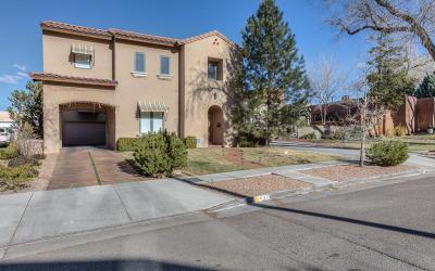 Albuquerque Single Family Home For Sale: 637 Cedar Street NE