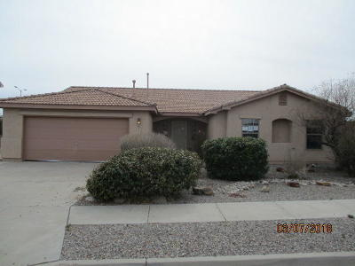 Rio Rancho Single Family Home For Sale: 7208 Assisi Hills Road NE
