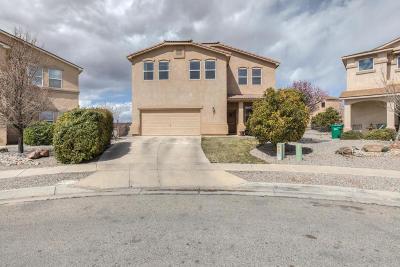 Rio Rancho NM Single Family Home For Sale: $265,000