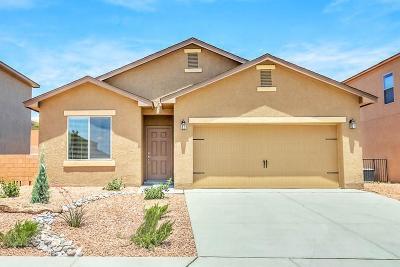 Albuquerque Single Family Home For Sale: 9809 Artemsia Avenue SW