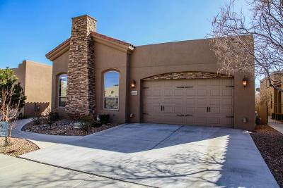 Albuquerque Single Family Home For Sale: 1409 Valle Lane NW